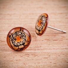 Náušnice pecky -  Tygr